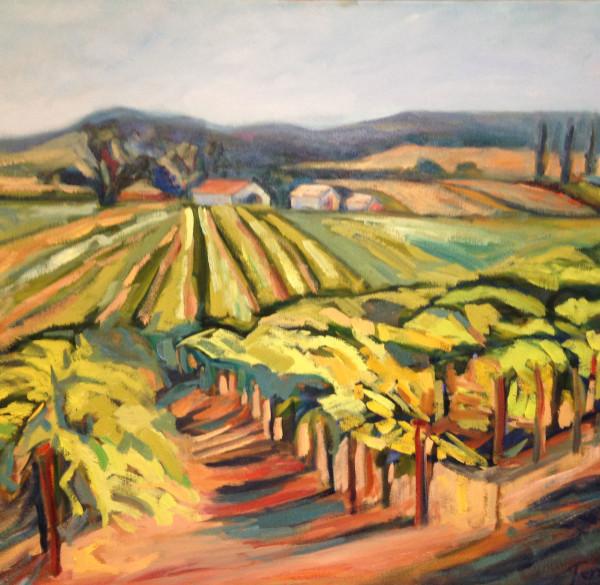Paso Vineyard