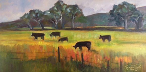 santa margarita cows